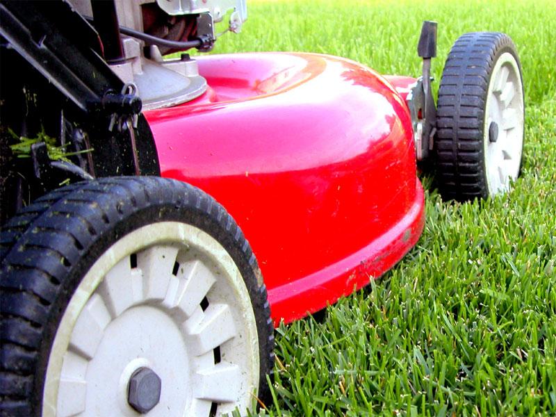 lawn-care4